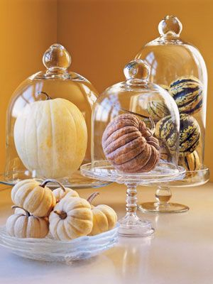 10 Ways to Decorate with Pumpkins - Place Under a Cloche (via Country Living) | www.andersonandgrant.com