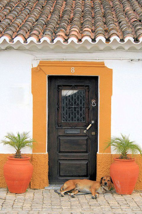 Alentejo doors #Marvao #Alentejo #Portugal….. BOWSER WAS OUT GALAVANTING LAST NIGHT - HE'S HOPING THEY'RE NOT TOO ANGRY WITH HIM, CAUSE HE'S MIGHTY HUNGRY………OPEN UP, YOU GUYS………..ccp