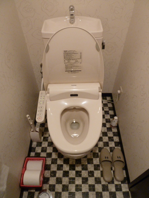 In Japan, there is a fascination with improving *everything*, and toilets are no exception.  Check out the control panel on the left side of the bowl.  These are for everything from seat warmers to 'squirters' to buttons that generate a flushing *sound* without actually flushing the toilet.