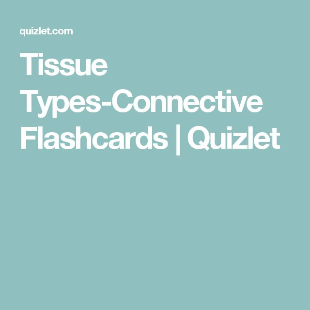 Tissue Types-Connective Flashcards | Quizlet