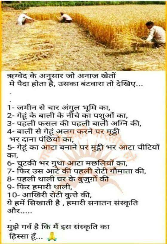 Pin by Narindar Naswa on Hinduism   Hindi good morning