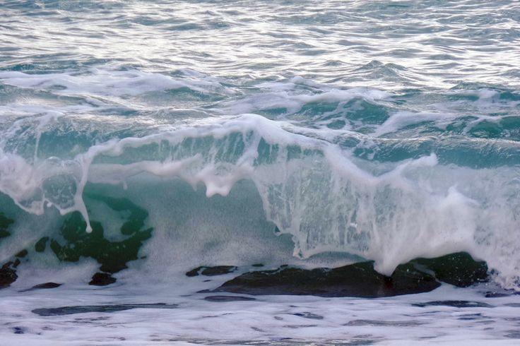 Живая вода черного моря