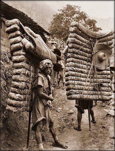 Men Laden With Tea, Sichuan Sheng, China [1908] Ernest H. Wilson [RESTORED] by ralphrepo, via Flickr