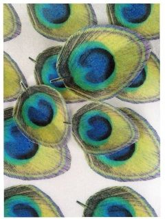 """Edible Wafer Sheet of Assorted Sized Peacock Feathers. Images are printed on solid 8 X 10"""" wafer sheet and need to be cut out. 17 Per sheet. Images Measures Approx 2"""" x 2 1/2 for larger feathers and 2"""" x 1 1/2"""" for smaller ones. Use for a number of different baked goods."""