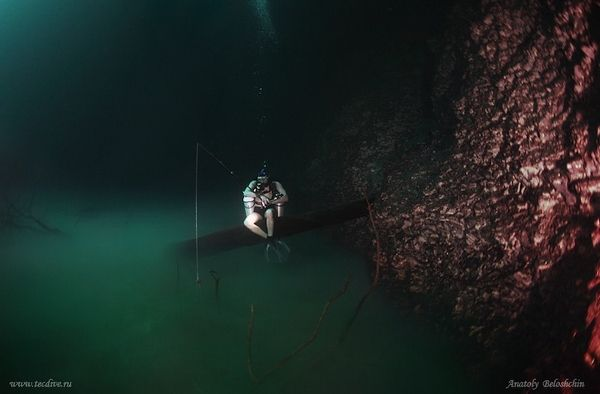 In Mexico, An Incredible 'Underwater River' That Flows Along The Ocean Floor - DesignTAXI.com
