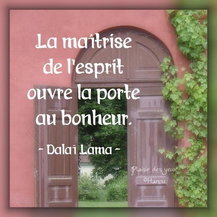 Il faut se libérer de la souffrance, de la détresse et vivre paisiblement. L'essentiel du Bouddhisme, ce n'est pas des «réponses à des questions sans solution», comme la vie après la mort ou encore, l'existence de Dieu.