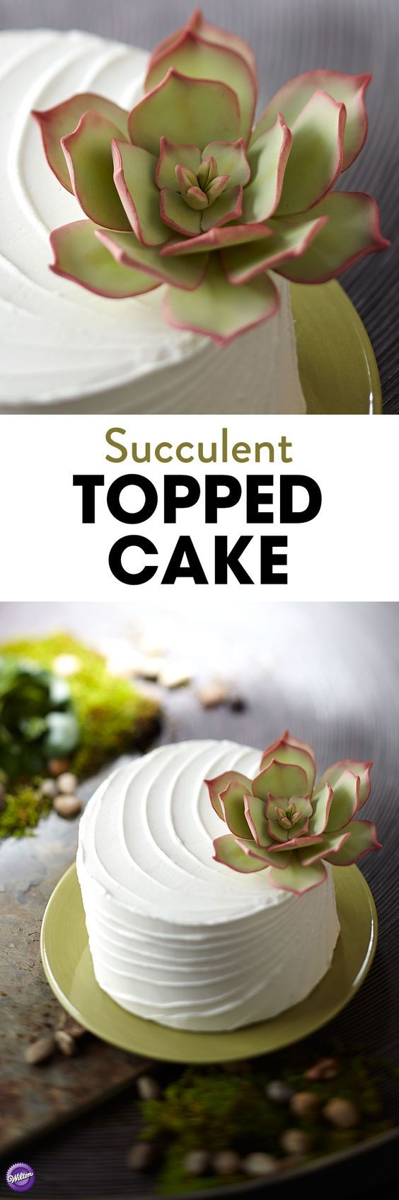 Learn how to decorate a cake with a pretty and lifelike fondant succulent plant that will add a fresh, natural touch on a buttercream-iced cake. Use the Wilton Gum Paste Flower Cutter Set to create this hardy-looking plant.
