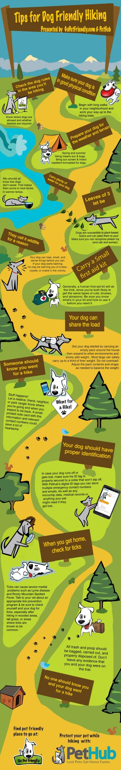 To make sure your dog's next hiking adventure doesn't turn into a misadventure,