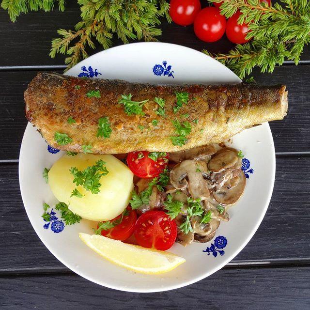 Edel's Mat & Vin : Sprøstekt fjellørret med kremet sopp !