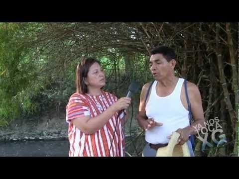 Osorio Chong convirtió poza de agua limpia en receptora de aguas del drenaje en Chililico en la Huasteca Hidalguense.