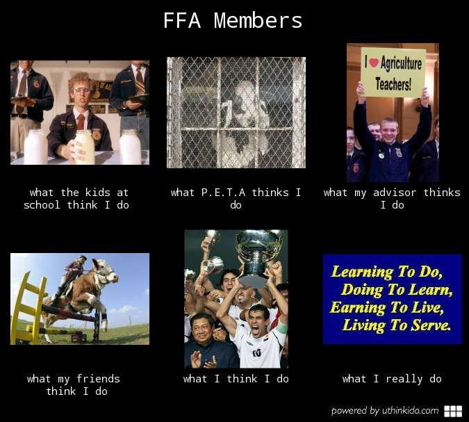 The truth about FFA Members!! :) except I really did what Napoleon Dynamite did. Bahaha :)))