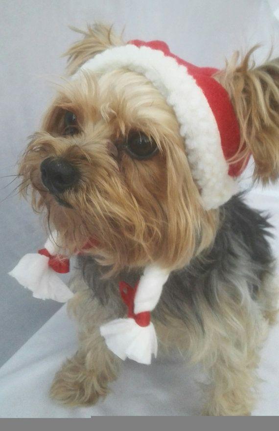 Dog Christmas hat, christmas hat for dogs, santa dog hat, christmas dog hat with braiding, gorro de navidad para perros, gorro de santa