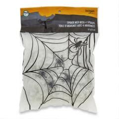 Spider Web with Spiders
