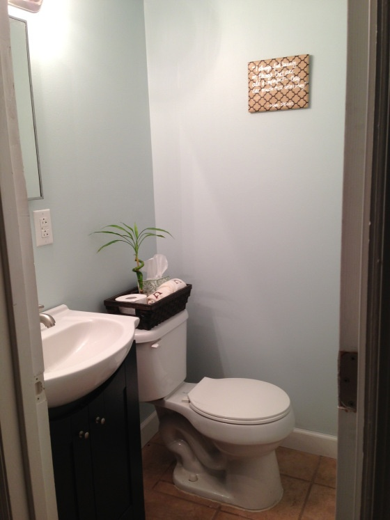 Blue And Brown Themed Bathroom: Best 20+ Blue Brown Bathroom Ideas On Pinterest