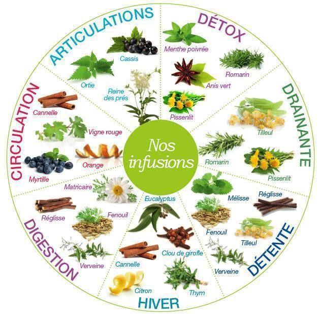 Des plantes utiles à la santé - Bien être, santé, relaxation, massage, stress…