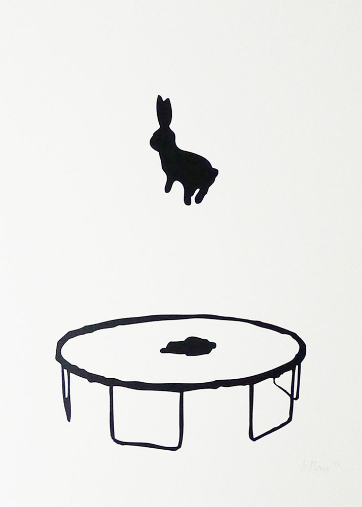 cute art inspiration for simple black and white art which shows movement. Could put any animal jumping. The shadow on the trampoline is essential.