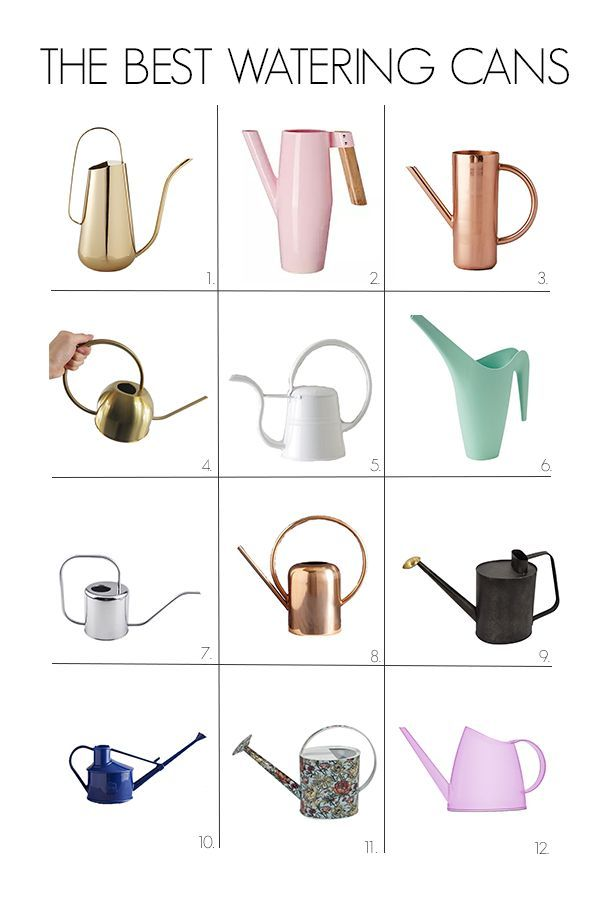 Cute Watering Can Roundup Watering Can Indoor Watering Can
