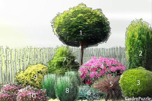 Rosliny Na Rabate Do Cienia Jakie Gatunki Sadzic I Jak Je Komponowac Zeby Cieszyc Sie Pieknymi In 2020 Garden Planning Backyard Landscaping Plans Garden Inspiration