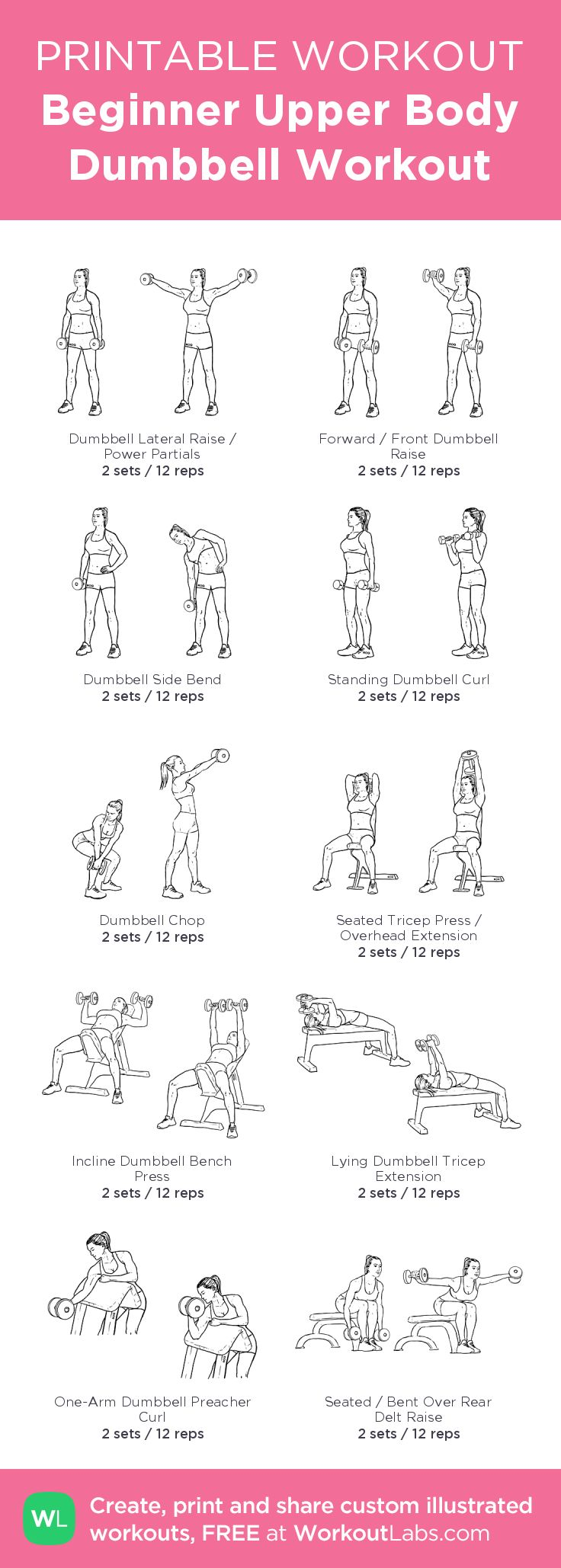Beginner Upper Body Dumbbell Workout– my custom exercise plan created at WorkoutLabs.com • Click through to download as a printable workout PDF #customworkout