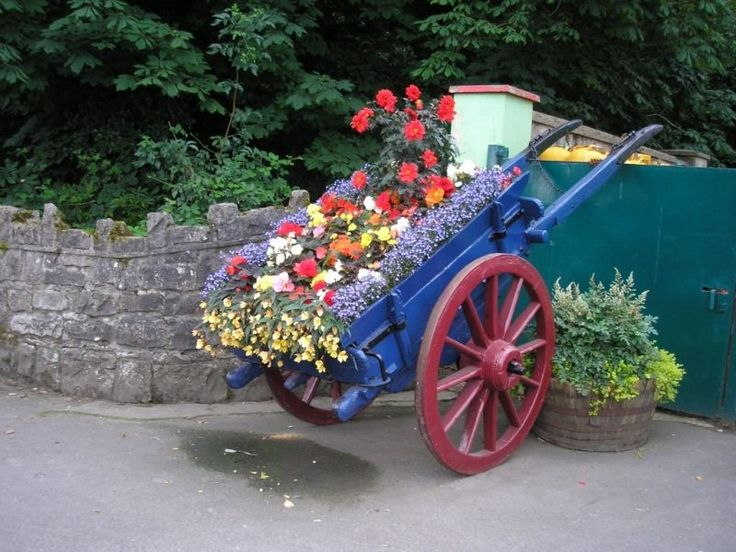 Schubkarre mit Blumen bepflanzen und im Vorgarten ausstellen