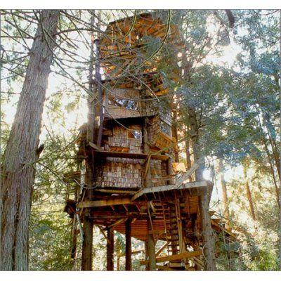 treehouse masters buzz master revient trs vite avec de nouveau buzz hard
