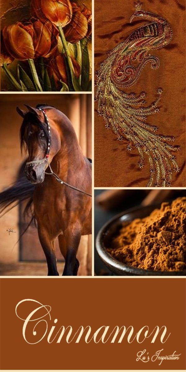 ~Cinnamon Spice Cottage~