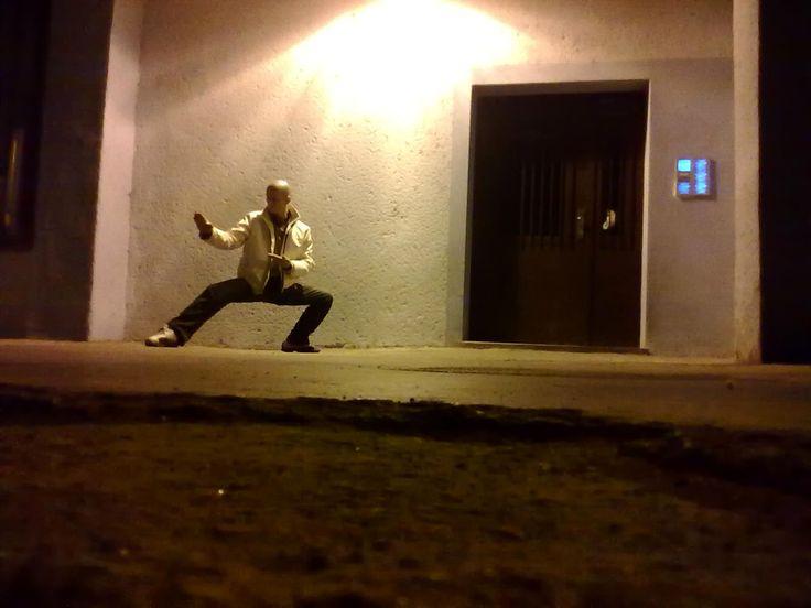 karate-do 1