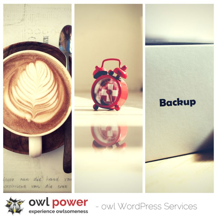 Some routines bring pleasure others dont and some are just absolutely necessary! Good morning and dont forget to back-up your #Wordpress!
