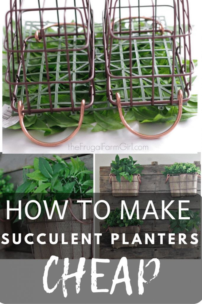 Farmhouse Style Diy Wire Hanging Plant Basket Succulent Planter Diy Hanging Plants Plant Basket