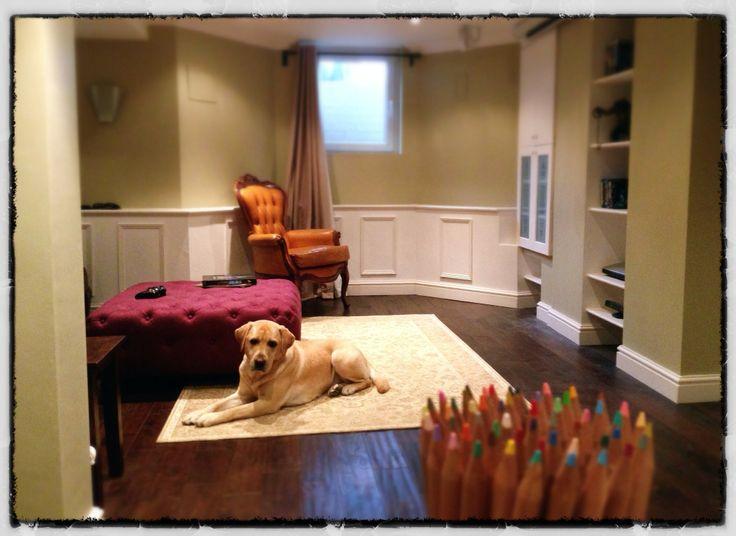 Graeme's Labrador relaxing in his Manchester home
