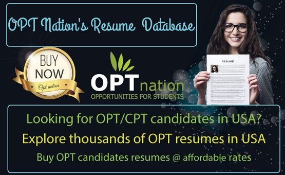 Best Database of OPT Resumes in USA Resume, Student and The ou0027jays - resume database