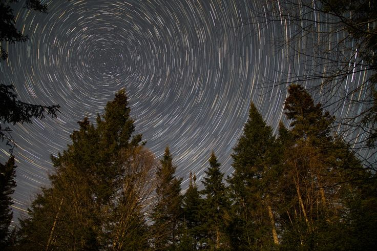 All around the North star, Gallants, NL