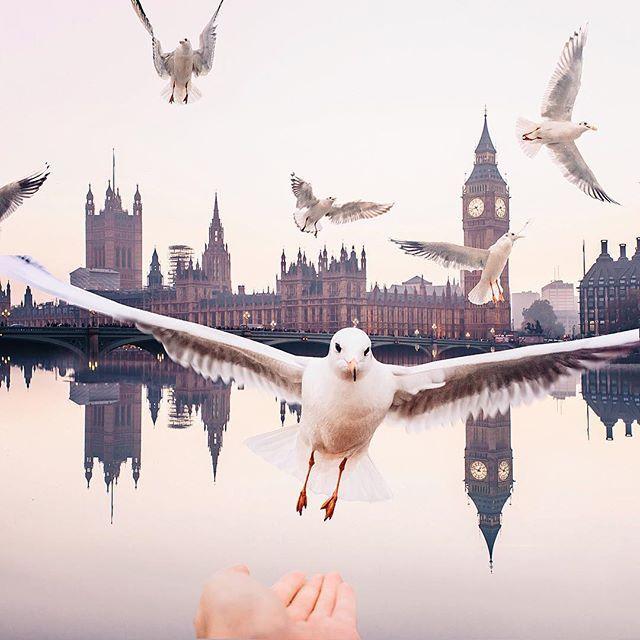 Главное любимое занятие в Лондоне // Favorite thing in London