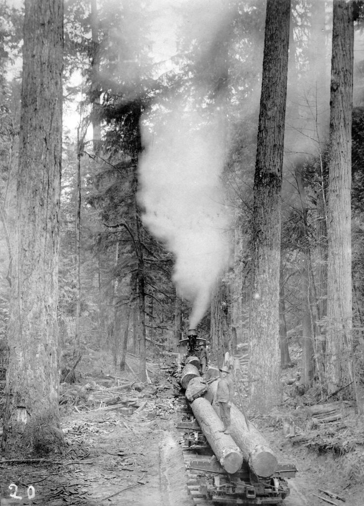 Locomotive Engine Pushing Railroad Cars with Logs by John Fletcher Ford