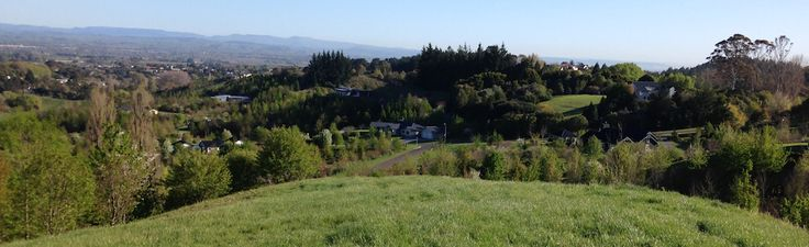 Tauroa Valley building site