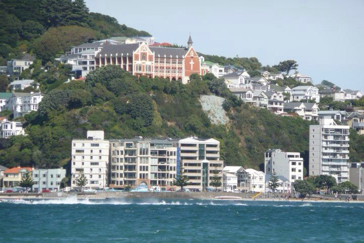 Wellington from the water