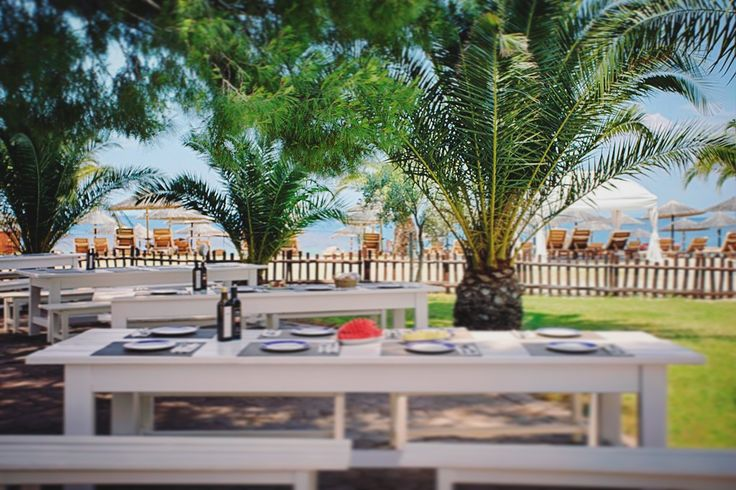 #PortoCarras #outdoor #dinning #Halkidiki #palmtrees #seaside #view #nature #naturelover