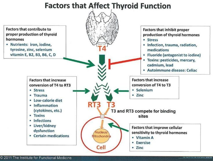 Hypothyroid & Hashimoto's: Factors that Affect Thyroid Function © 2011 The Institude for Functional Medicine - Paula Owens, MS Holistic Nutritionist and Functional Health Practitioner #Diettipsforthyroidproblems #Thyroidproblemsanddiet #HolisticPractitioner #Therightdietformythyroid