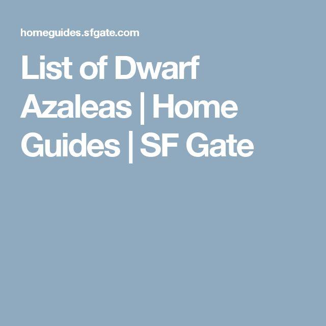 List of Dwarf Azaleas | Home Guides | SF Gate