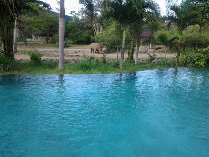 Poolside @ Mara River Safari Lodge..