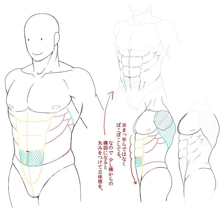 なんちゃって筋肉の描き方【自分用】 [7]