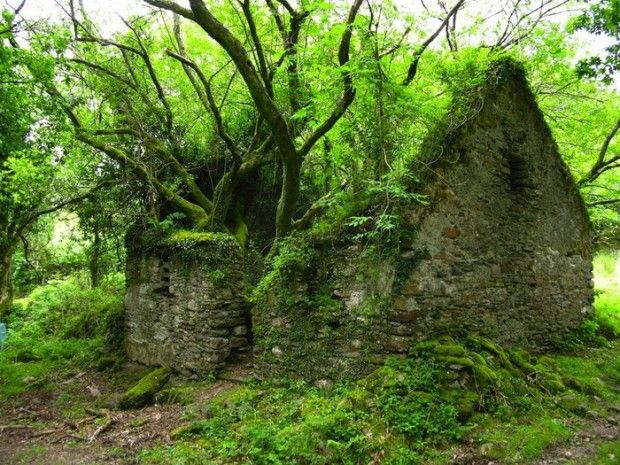 34 Abandoned But Beautiful Places,Mysterious Road Creevy, Ireland