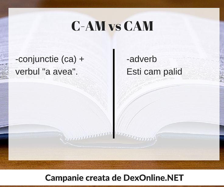 Dexonline promoveaza limba romana vorbita corect #salveazalimbaromana #gramatica http://dexonline.net/definitie-cam