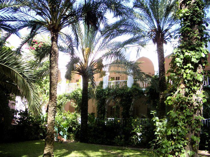 Hurricane Hotel, Tarifa. View from the garden
