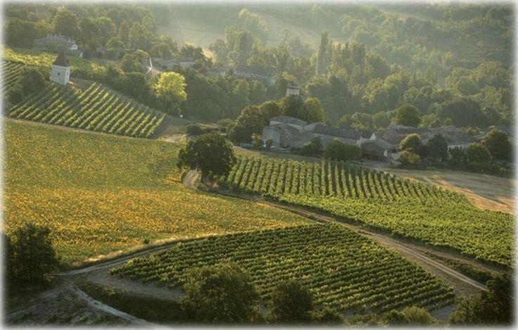 Redécouvrez les vins de Bergerac