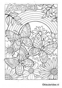 Kleurplaat vlinder 3, kleuteridee.nl ,butterfly preschool coloring.