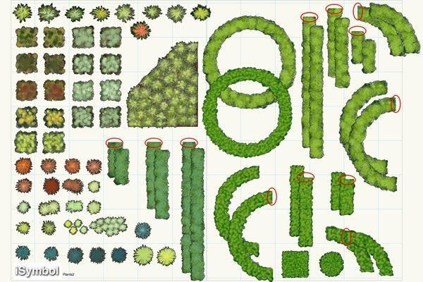 17 best images about plant symbols on pinterest gardens