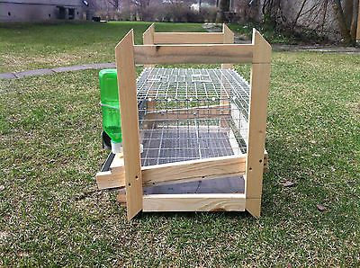 QUAIL CAGE FOR 16 QUAILS WITH FEEDER AND DRINKER. QUAIL BOX