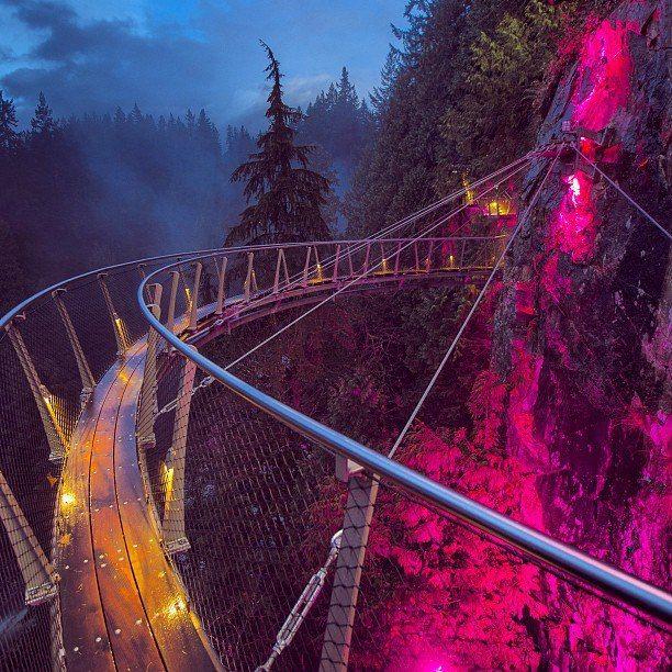 1000+ Ideas About Suspension Bridge On Pinterest