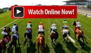Watch the biggest event Kentucky Derby 2015 Live Stream Online. The Racing telecast on Churchill Downs